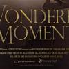 A WONDERFUL MOMENT (2013)
